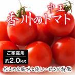 トマト 中玉 フルティカ 香川県産 約2kg ご家庭用・不揃い 送料無料 農家採れたてトマト