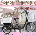 電動自転車 三輪自転車 電動アシスト自転車203 電気自転車 Airbike