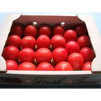 熊本八代産 フルーツトマト(塩トマト) 1箱満杯詰め(約1.5kg 15〜30玉前後)塩とまと