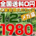 【1.5キロ箱】だだちゃ豆ご家庭用が開店記念!激安超目玉・ お届け時期を選べます!