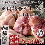 送料無料 三和の純鶏名古屋コーチン正肉セット(もも・むね・ささみ約1.2kg) 創業明治33年さんわ 鶏三和 地鶏 鶏肉 冷蔵 4〜5人