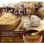 乾燥生姜粉末 30g  乾燥生姜 生姜粉末  生姜パウダー 高知県産生姜100%