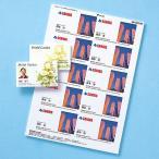 サンワサプライ フォト光沢名刺カード カラーレーザー用・10シート(LBP-MMC10KN)(ネコポス対応)