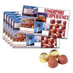 [送料無料] シンガポールお土産 | エキスペリエンスチョコレート 6箱セット【166509】