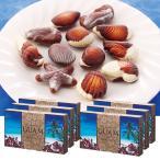 [送料無料] グアムお土産   シーシェル チョコレート 6箱セット【164515】