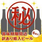 [5000円以上で送料無料][訳あり]輸入ビールアソート 6本セット【R06110】