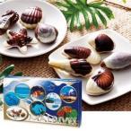 [5000円以上で送料無料]モルディブお土産 | モルディブ シーシェルチョコレート 1箱 紙袋付き 【105250】