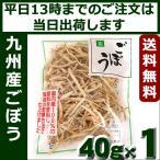 吉良食品 乾燥野菜 ごぼう40g 九州産