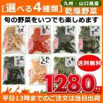 [選べる4種類]吉良食品 国産乾燥野菜 ごぼう れんこん 大根葉・人参・ねぎ・高菜・ほうれん草