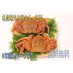 毛蟹 北海道産 約500g×3尾 冷凍 極上 送料無料