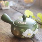 常滑焼 手描き 富仙作 緑泥さざんかお茶急須 ティーポット ステンレス製茶こしアミ 和食器 食器
