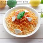 洋食器 完熟トマトのリコピンたっぷり クリームパスタカレーボール プレートおうち ごはん うつわ 陶器 美濃焼 日本製