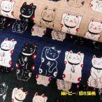綿和柄PTドビー織生地(AP22308)招き猫