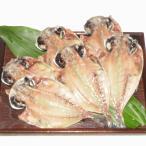 伊豆・伊東の 上鯵 (トロあじ)の 干物 あじのひもの6枚セット バラ売りを加えて詰め合わせにもオススメ