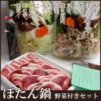 猪肉上撰 ぼたん鍋セット 丹波篠山(野菜・味噌付き)(4人前分)兵庫県産