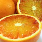 有機JAS法準拠 無農薬 ブラッドオレンジ 3kg A品 有機ネーブル 能勢さんの ブラッドオレンジ 国産