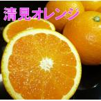 清見オレンジ 4.5kg×2箱  家庭用 訳あり 清見タンゴール 送料無料 清見オレンジ