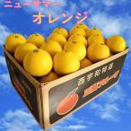 ニューサマーオレンジ  家庭用 4.5kg×2箱 西宇和産 小夏 日向夏 送料無料