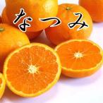 カラマンダリン 家庭用 5kg×2箱 愛媛県産 なつみ みかん 送料無料