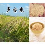 多古米 5kg (玄米)【平成28年産】 千葉県産 【送料無料】幻の多古米