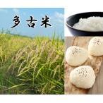 多古米 5kg×2袋 白米 令和2年産 千葉県産 送料無料 幻の米 多古米