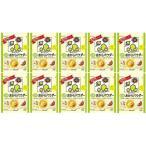【送料込価格】 キッコーマン 豆乳おからパウダー120g×10個(ケース販売)