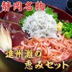 遠州灘の恵みセット(まぐろ丼、かつおたたき、桜えび、ゆでしらす、かつお揚げたたき) 静岡名物 父の日祝い お中元 のし対応可