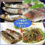 一本釣りうるめいわしセット(1日干、炙りたたき、オイルサーディン、ぶっかけ漬け丼)(冷凍)送料無料