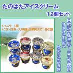 (26日 9:59まで4倍)アイス詰め合わせ12ヶ入り(バニラ:4個、ごま・抹茶・大吟醸・江刺りんご:各2個)