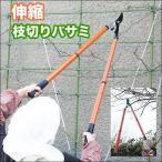 伸縮 枝切りバサミ (1本) ガーデニングの必需品♪庭のお手入れ・剪定に!