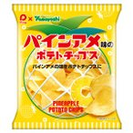 【訳あり 特価】 賞味期限:2017年12月1日 パインアメ味 ポテトチップス (48g)