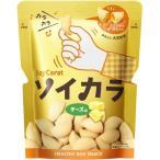 ソイカラ チーズ味 (27g) スナック菓子