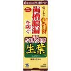 小林製薬 薬用歯みがき 生葉ひきしめ実感タイプ(100g) 歯槽膿漏を防ぐ はみがき粉