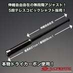【メール便!】伸縮カーボンアンテナ ブラックカーボン×クロームメッキ フェアレディZ(#Z33) / テレスコピック