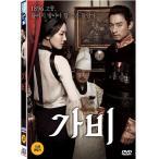 GABI ガビ 国境の愛 DVD 韓国版 チュ・ジンモ、キム・ソヨン