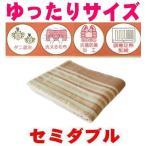 ショッピング大判 ゆったり大判セミダブルサイズ洗える掛敷電気毛布/抗菌防臭温度調節付/あったかアイテム