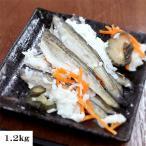 小樽かね丁鍛治北海道 ハタハタ飯寿司(1.2kg) いずし はたはた 鰰 伝統の味
