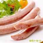 トンデンファーム ゆずウインナー 120g(4本入り) ウインナー 豚肉 おかず バーベキュー 焼肉 BBQ