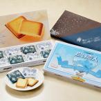 石屋製菓 白い恋人 ホワイト&ブラック(24枚入り)