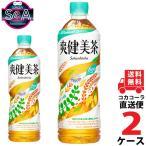 爽健美茶 PET 600ml 2ケース × 24本 合計 48本 送料無料 コカコーラ社直送 最安挑戦