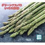 アスパラガス 北海道産 グリーンアスパラ(ハウス栽培) 秀品 2L 1.0kg(500gx2) 送料無料