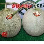 北海道名産 共撰 夕張メロン 良品 2玉(約3.2kg) JA夕張市が誇る北海道の夏を代表する特産物!!【送料無料】