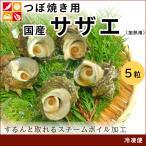 国産 つぼ焼き用 サザエ 5個 ボイル さざえ 栄螺 BBQ バーベキュー 海鮮