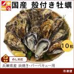 広島産 殻付き牡蠣(10個)[ 牡蠣 海鮮 BBQ バーベキュー カキ 国産 冷凍 ]