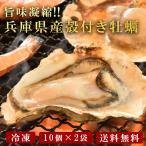 ショッピング広島 広島産 殻付き牡蠣(10個×2セット)[ 牡蠣 海鮮 BBQ バーベキュー カキ 国産 冷凍 ]
