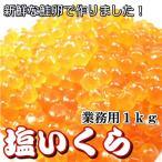 塩いくら 1kg  鮭卵  送料無料 塩イクラ いくら塩漬け 業務用サイズ・塩いくら1kg・