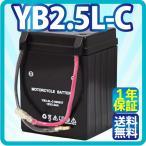 バイクバッテリーYB2.5L-C KSR-1,KSR-2 NSR50/NSR80  保証付