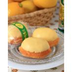 さわやかレモンケーキ(1個) *国産レモン・国産小麦