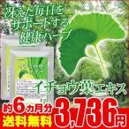 イチョウ葉エキス 約6ヵ月分 お徳用半年分サプリSALE サプリ サプリメント 送料無料