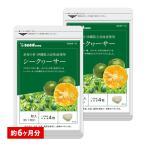 サプリ サプリメント ビタミンC シークワーサー 約6ヵ月分 お徳用半年分サプリSALE サプリ サプリメント ダイエット、健康グッズ